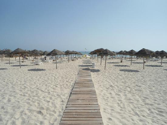 Djerba Sun Club: beach