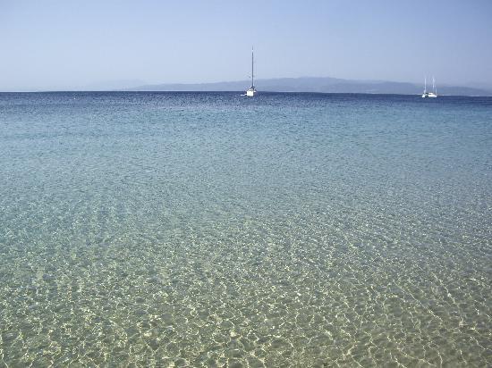 Koukounaries, اليونان: Mare cristallino di koukounaries beach. 
