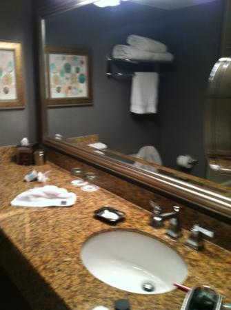 Omni Jacksonville Hotel: The sink and counter space!
