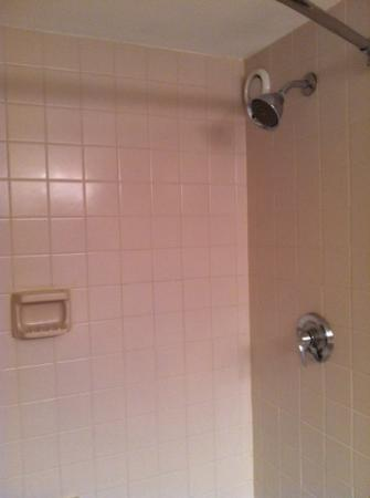 Omni Jacksonville Hotel: The shower area