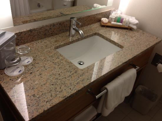 Coast Chilliwack Hotel: Granite countertop!
