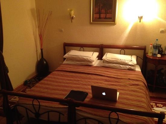特麗耶內酒店照片