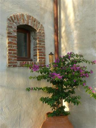 Borgo San Rocco Resort: particolare al tramonto