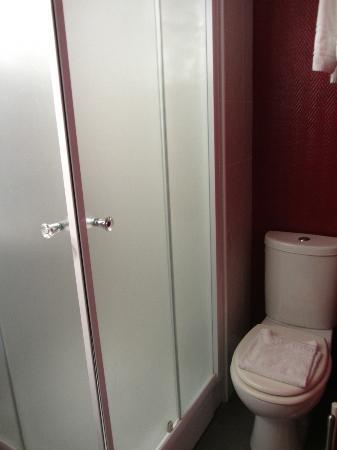 Hotel Gambetta : Shower and toilet