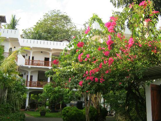 Unawatuna Nor Lanka Hotel : The hotel gardens