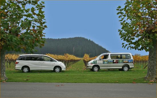 Nest Haven Bed and Breakfast: Enjoy discounted tours with hawkes Bay Scenic Tours as a Nest Haven client
