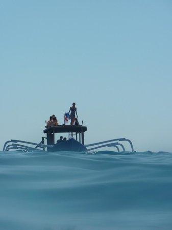 Gili Scuba Diving