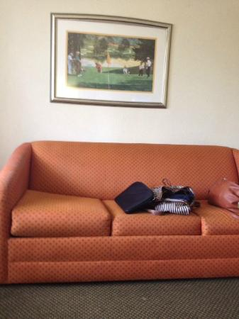 Clarion Suites : Saggy, dirty couch.  Framed print is even sagging!