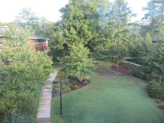 Woodlands Hotel & Suites - Colonial Williamsburg: Beautiful Scenery from window 1