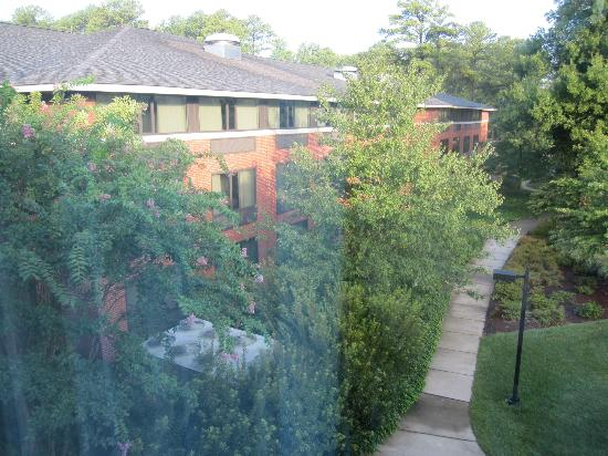 Woodlands Hotel & Suites - Colonial Williamsburg: Beautiful Scenery from window 2