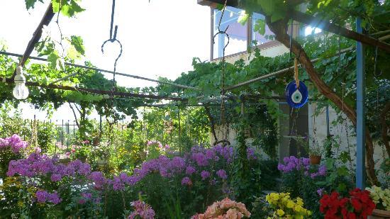 Cavit Hotel : Jardin fleuri