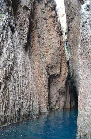 Le Pass Partout: Scandola: Along the coastline