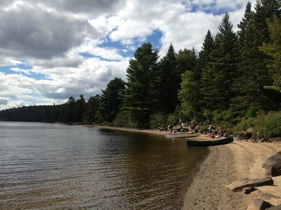 Algonquin Provincial Park: Random beach we canoed to on Rock Lake