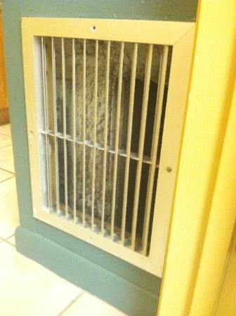Daytona Beach Regency: Dirt built up in vent