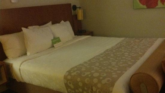 La Quinta Inn & Suites Savannah Southside: Executive King bed