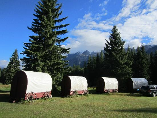 Beaverfoot Lodge: The covered wagons: a cool idea.