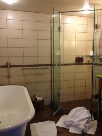 glass shower next to tub - Picture of Hotel Andaluz, Albuquerque ...