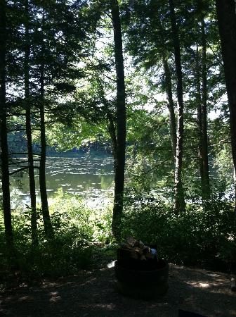 Half Moon State Park: View to lake from cabin