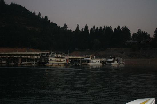 Bridge Bay at Shasta Lake: Marina 1