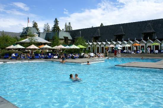 pool cabanas - picture of francis ford coppola winery, geyserville
