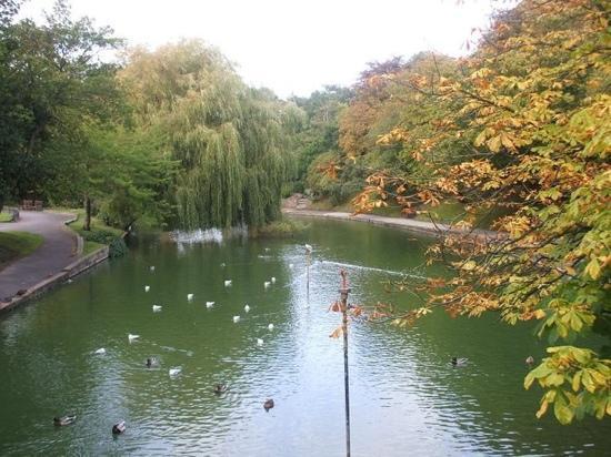 Botanical Gardens: Botanic Gardens