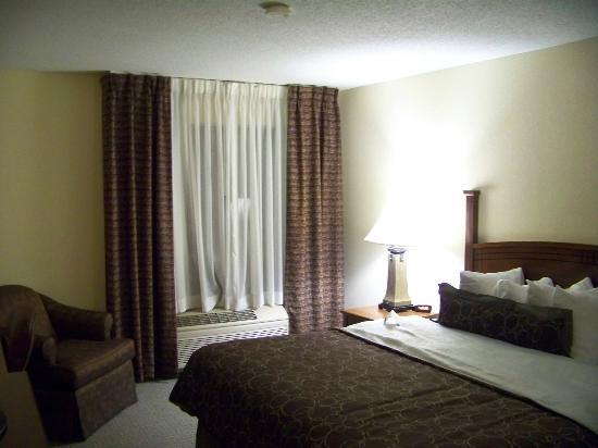 Staybridge Suites Columbia: Room