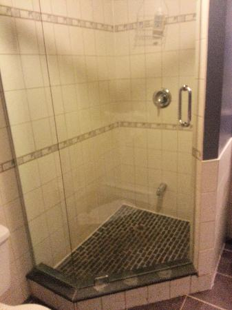 Hotel Le Saint Andre: clean big shower