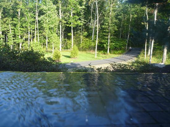 The Lodge at Woodloch: Jacuzzi view