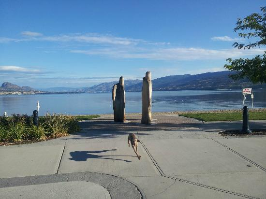 Penticton Lakeside Resort & Conference Centre: Our dog enjoying the $300 view.