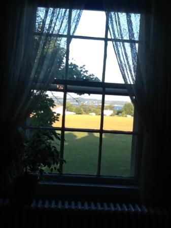 Yale Manor Bed & Breakfast: the view from our room