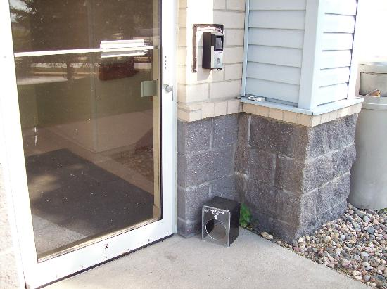 Quality Inn & Suites: Side entrance needs cleaning and repair.