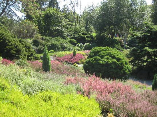 Interesting Gardens Picture Of Vandusen Botanical Garden Vancouver Tripadvisor