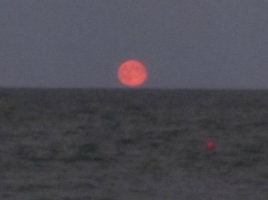 Nauset Inlet : moon rise - we ate supper on the beach on a blanket during this time