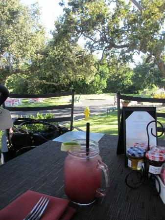 The Oak: view from terrace & awesome berry lemonade vodka