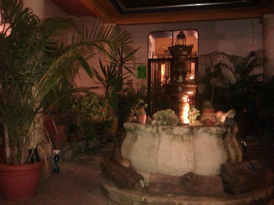 Luz de Luna Hostel: Fontaine