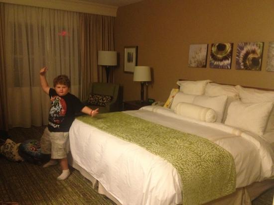 Chicago Marriott Midway: Ta-dah! the King Size Room