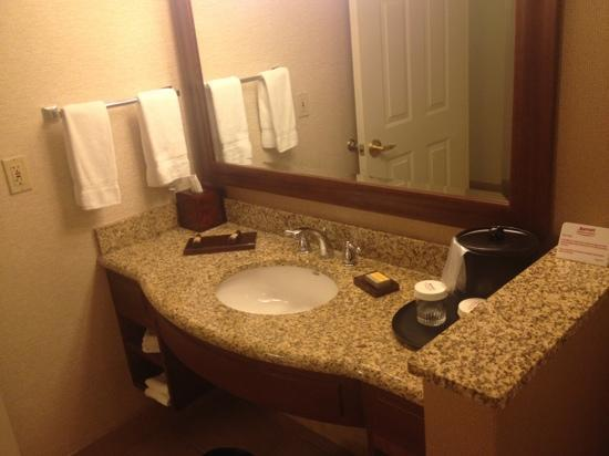 Chicago Marriott Midway: just one side of large bathroom