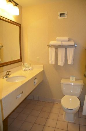 Holiday Inn Express Waynesboro - Rt. 340 : Very clean bathroom