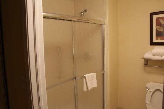 هوموود سويتس باي هيلتون دنفر: Shower Room
