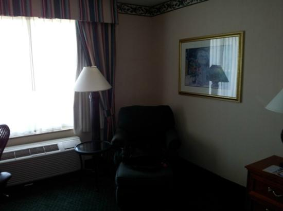 Hilton Garden Inn New York/Staten Island: Room