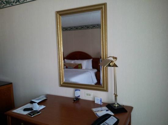 Hilton Garden Inn New York/Staten Island: Mirror