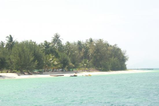 D'Coconut Resort: almost reaching after 20min speed boat ride