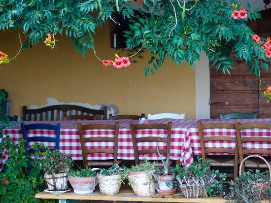 Agriturismo Le Magnolie: patio del ristorante
