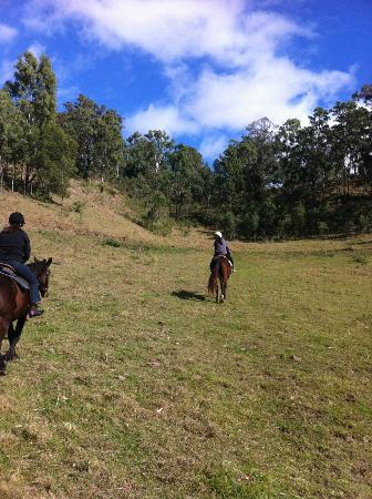 Gumnuts Farm and Horseriding Resort: Riding up the mountain