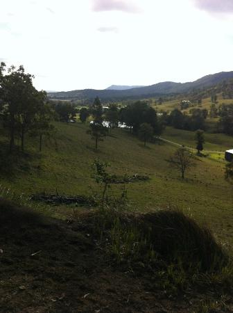Gumnuts Farm and Horseriding Resort: At the top