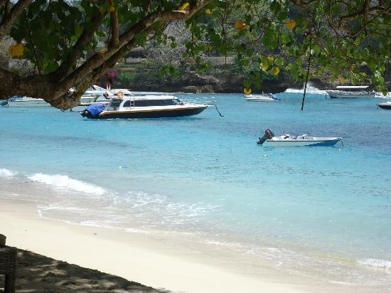 Kauai Helicopter Tours - Princess Cruises - Cruise Critic ...