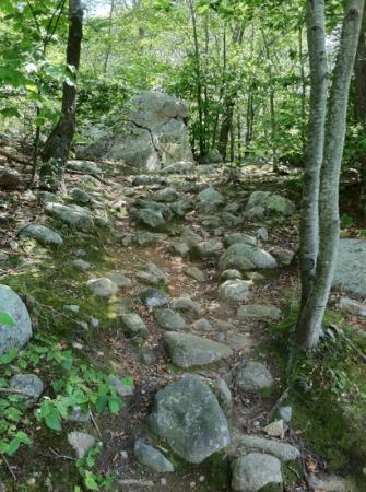 Dogtown Common: a section of the Babson Boulder Trail...rocky terrain