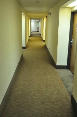 Sleep Inn: Hallway outside room