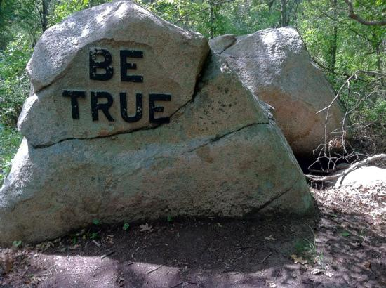 "Dogtown Common: one of @30 ""Values"" boulders"