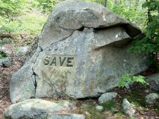 "Dogtown Common: another ""Values"" rock"